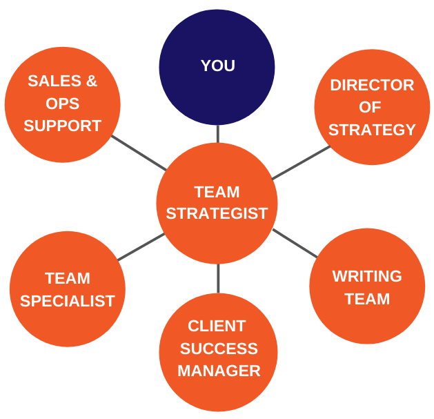 Trusted Positions on our SEO Team